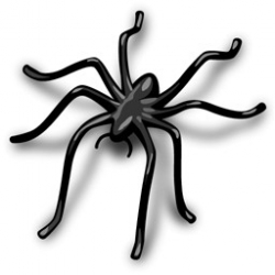Background Spider