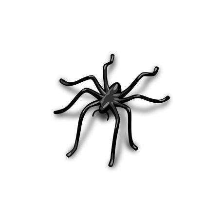 Araignée en arrière plan